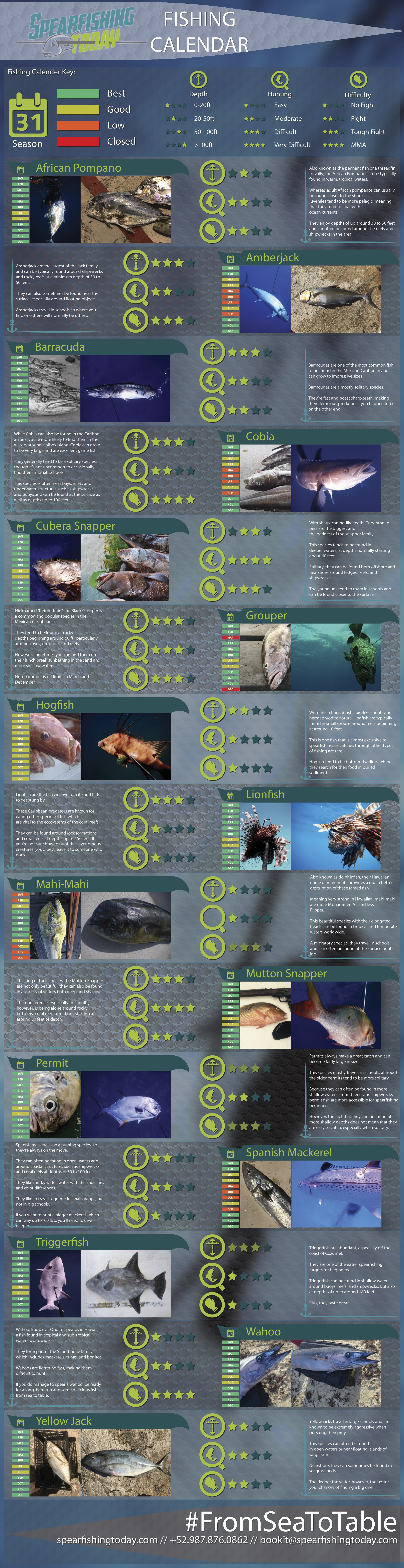 Mexican Caribbean Fishing Calendar: Where, When, & What to Hunt