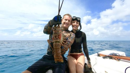 spearfishing for beginners