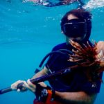 beginner spearfishing