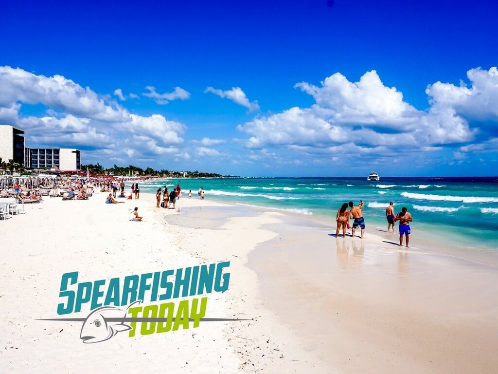 Spearfishing Playa del Carmen Review • Spearfishing Today
