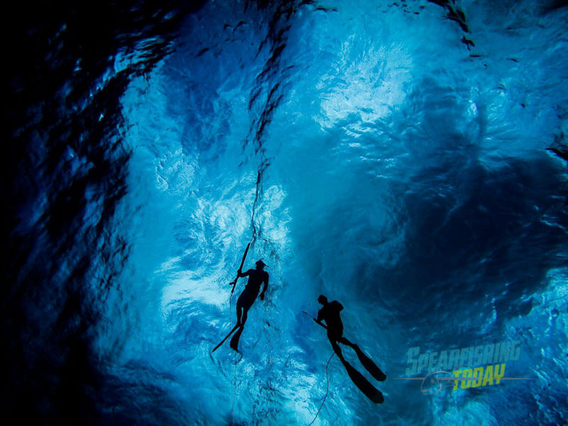 Spearfishing Mexico: The Unfinished History of Spearfishing