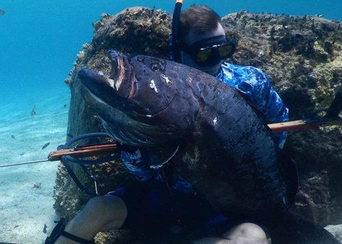 Pro spearfishing