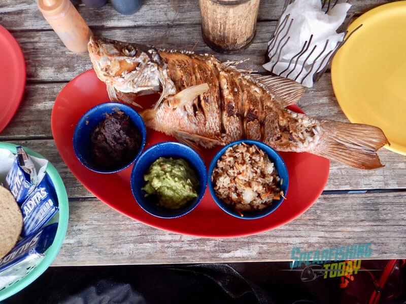 spearfishing-guide-playa-del-carmen-15