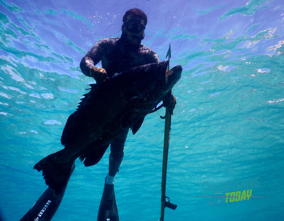cozumel-spearfishing-guide-2