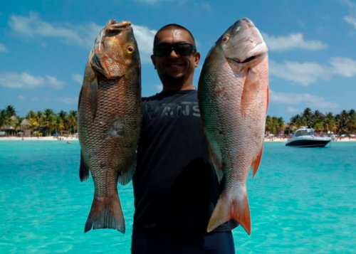 Spearfisher with catchs