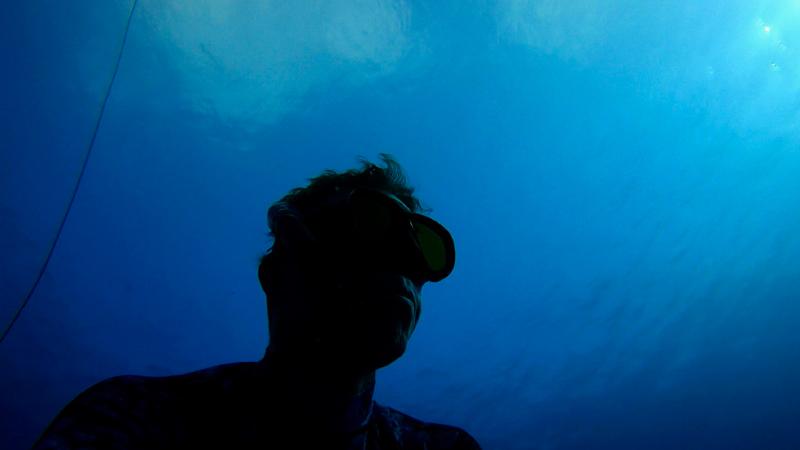 Underwater Leo