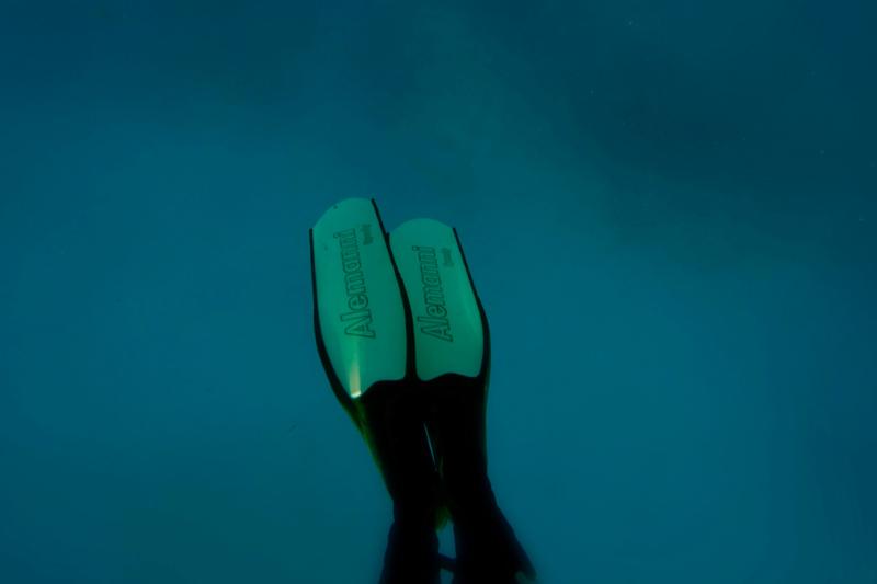 Freediving Alemanni Fins