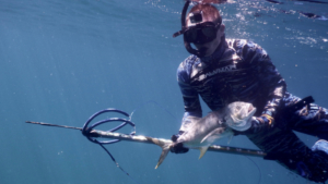 spearfishing man