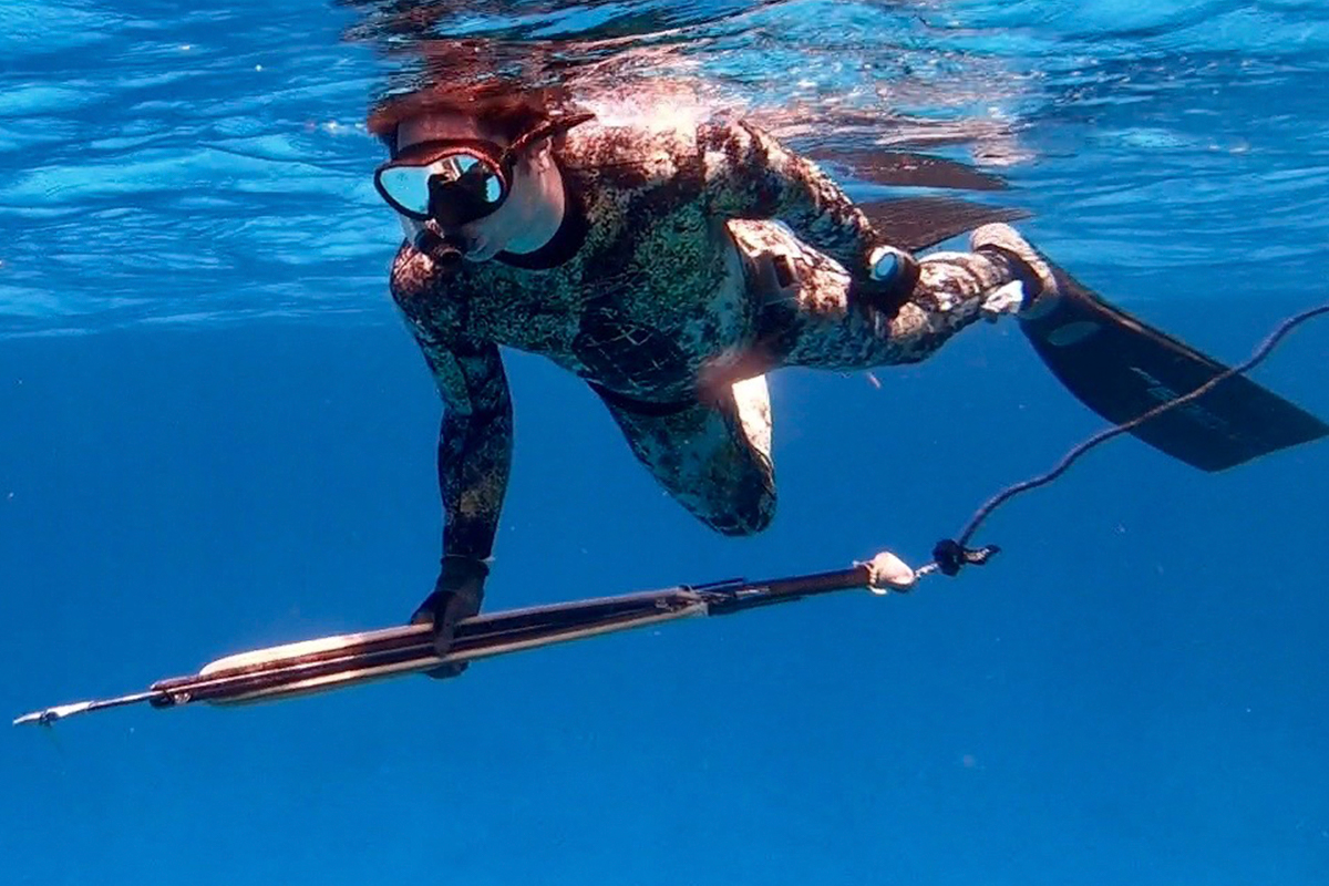Beginner Spearfishing Tips