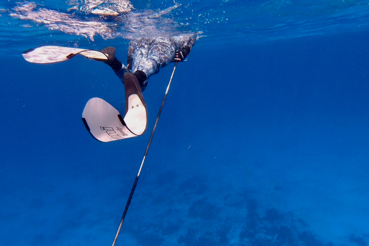 Spearfishing_Mexico_Promo