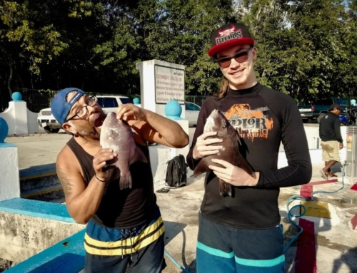 Spearfishing Cozumel Mexico – A sporting Adventure