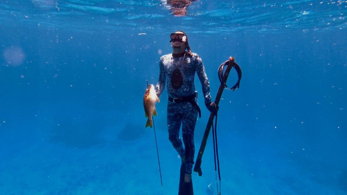 Playa del Carmen Introduction Spearfishing