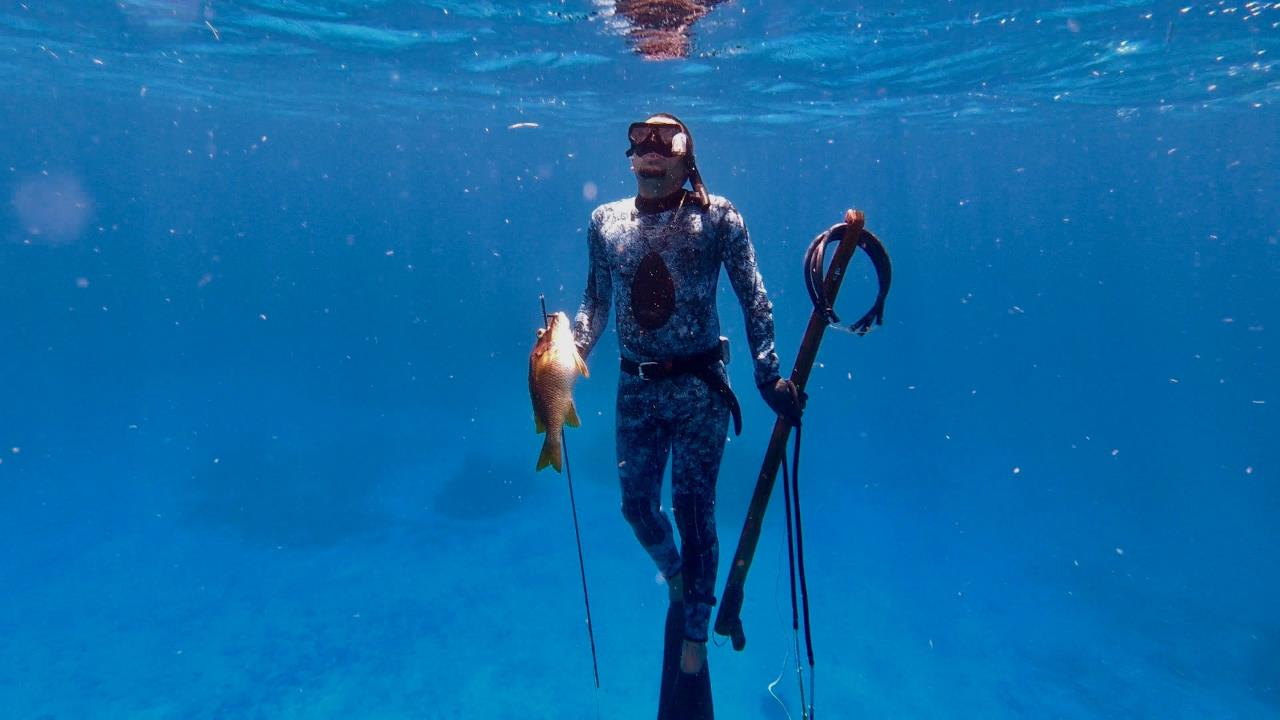 Playa del Carmen Introduction Spearfishing