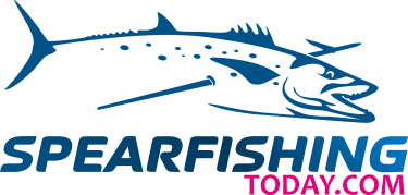 SperfishingToday.com Logo